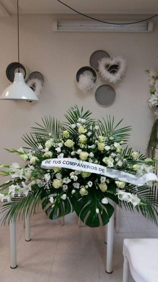 Centro Funeraria