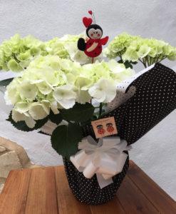 hortensia blanca envuelta