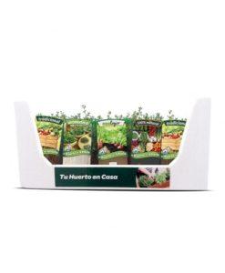 plantas aromaticas zaragoza